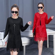 lilygirl - Long Sleeve Lace Panel Shift Dress